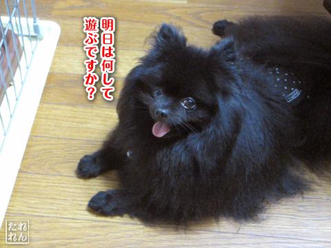 20120911_子作り合宿7