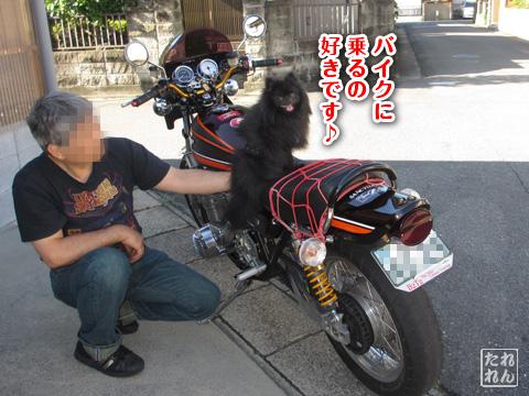 20120914_田舎道5