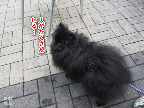 20120916_再会1