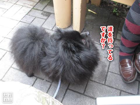20120916_再会2