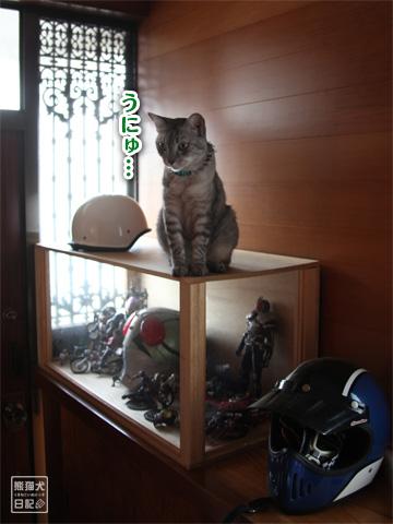 20120918_日常2