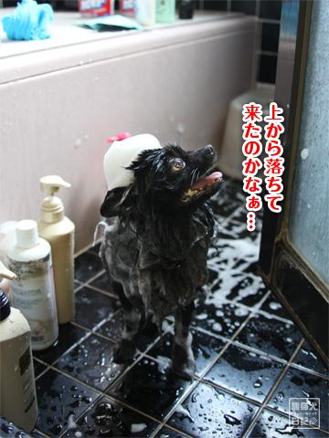 20120921_お風呂4