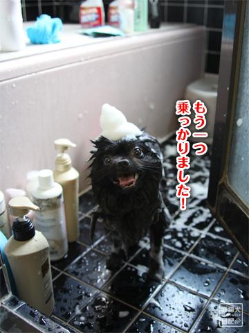 20120921_お風呂5