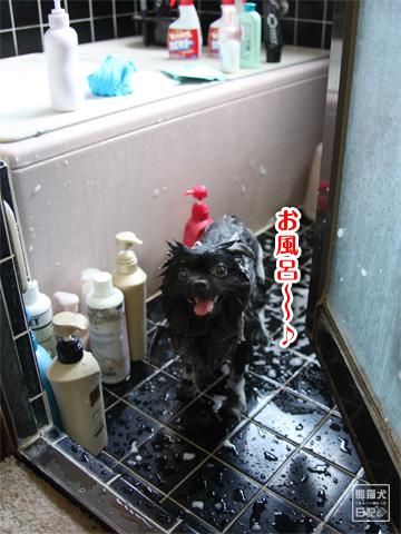 20120921_お風呂1