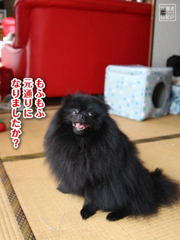20120921_お風呂7