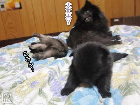 20120925_赤子たち1
