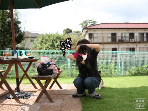 20121208_こじんまり2