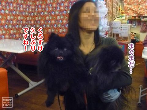 20121215_お泊り6