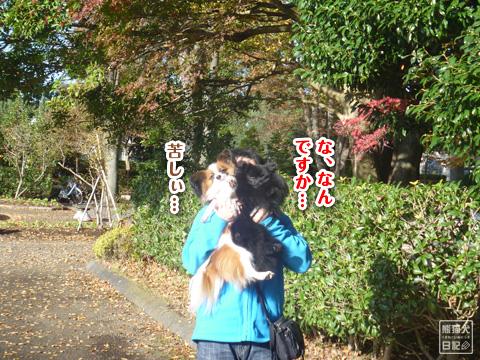 20121215_お泊り3