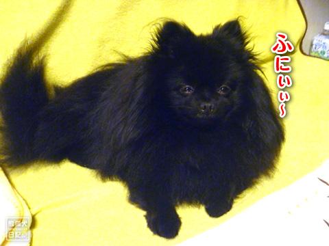 20121215_お泊り8