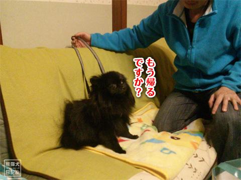 20121215_お泊り9