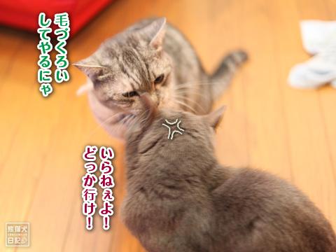 20121216_お風呂6