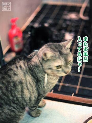 20121216_お風呂3