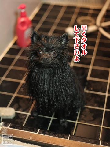 20121216_お風呂4