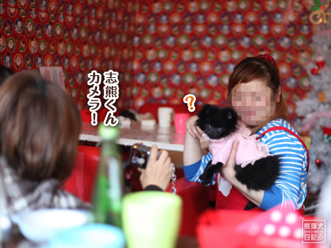 20121220_真熊&志熊5