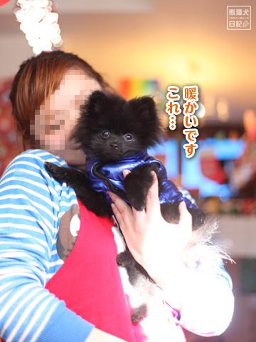 20121220_真熊&志熊3