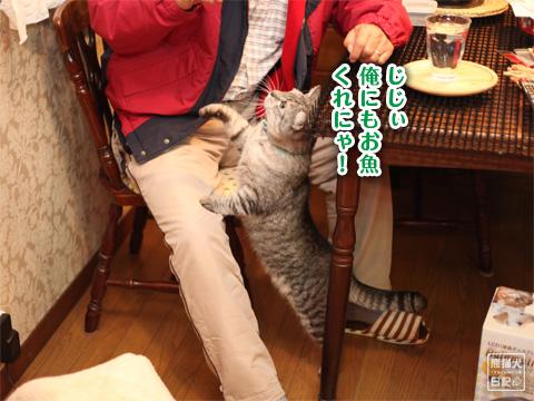 20121222_こぼれ写真4