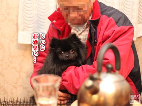 20121222_こぼれ写真1