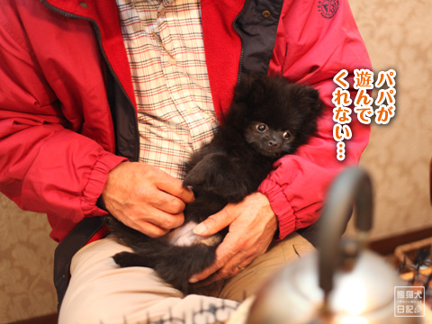 20121222_こぼれ写真2