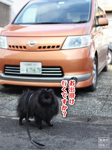 20121229_冬休み4