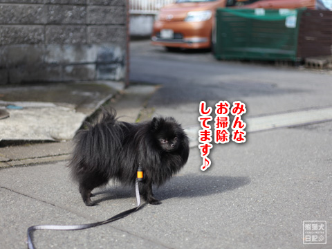 20121229_冬休み3