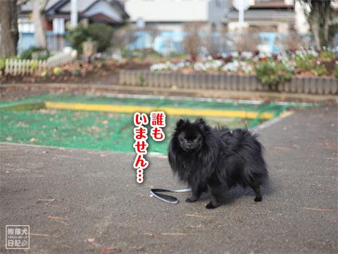 20121229_冬休み1