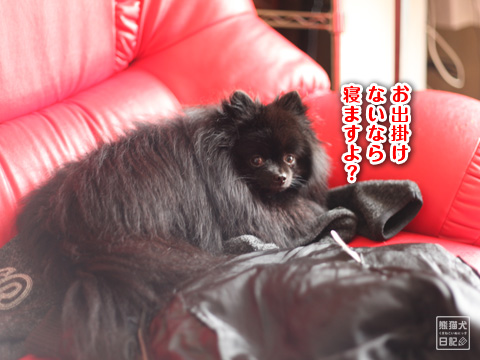 20121229_冬休み7
