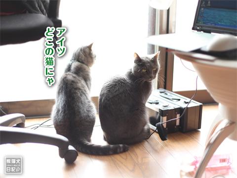 20121229_冬休み6