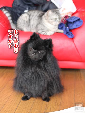 20130303_お風呂4