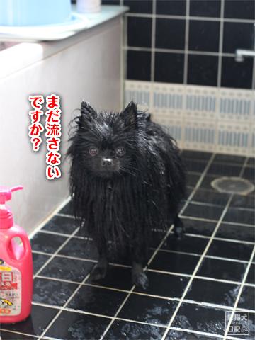 20130303_お風呂3