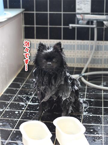 20130303_お風呂2