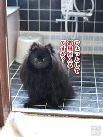 20130303_お風呂1