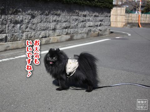20130311_土曜日4