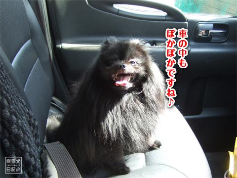 20130312_お出掛け…3