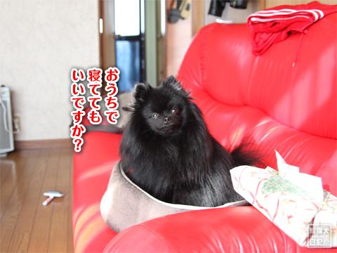20130316_寿喜6