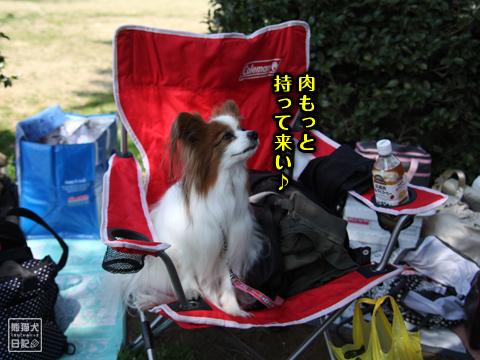 20130319_お台場BBQ7