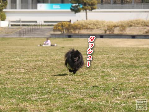 20130321_お台場BBQ5