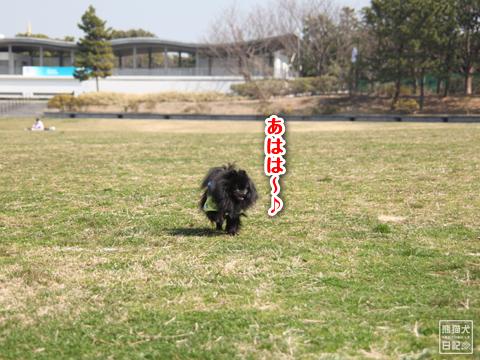 20130321_お台場BBQ6