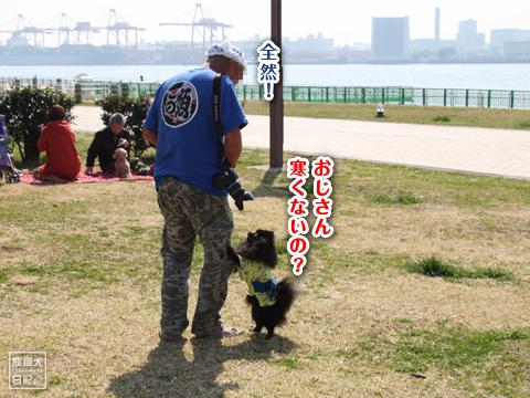 20130323_真熊の出張5