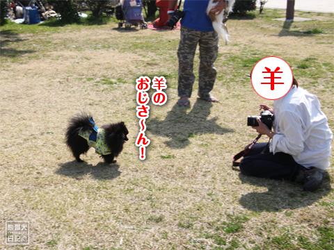 20130323_真熊の出張3