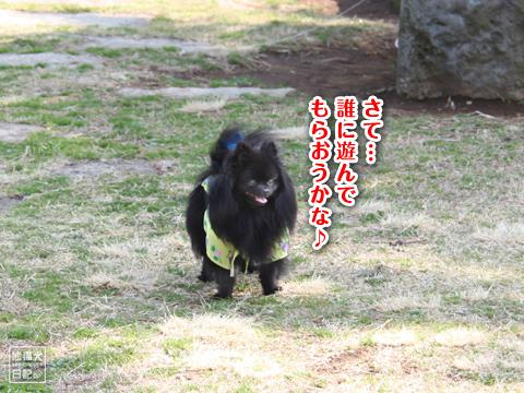 20130323_真熊の出張1