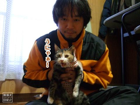 20130326_三毛猫ララバイ7