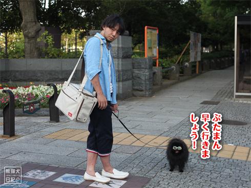 20130716_グラサン犬6