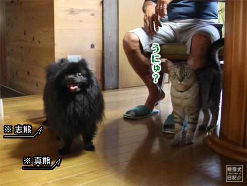 20130825_寿喜と志熊1