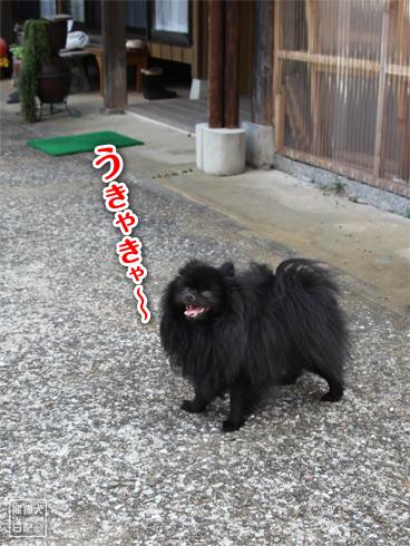 20130831_こぼれ写真2