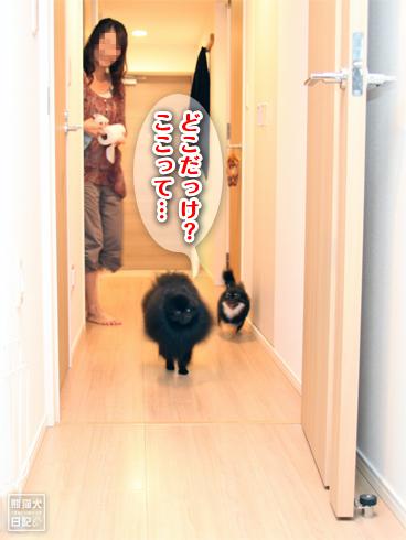 20131001_カディ邸4