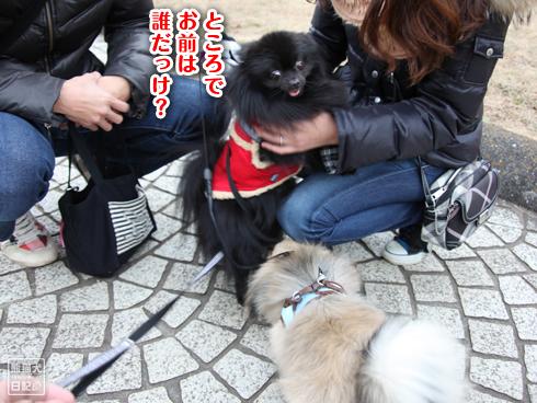 20140114_読者さん4