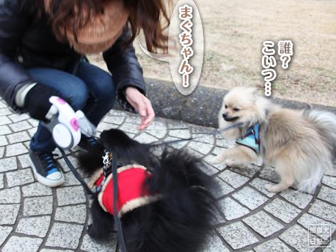 20140114_読者さん1