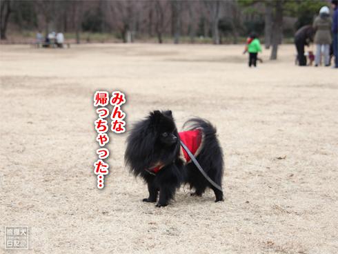 20140114_読者さん8