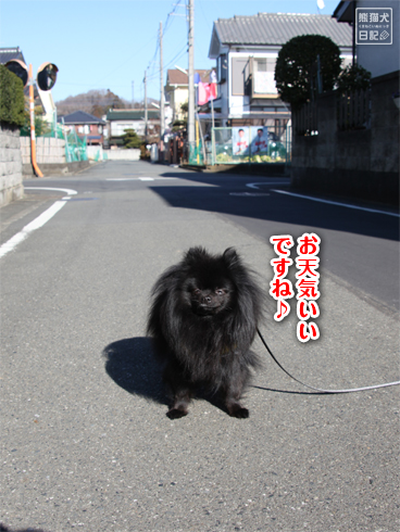 20140123_真熊散歩5